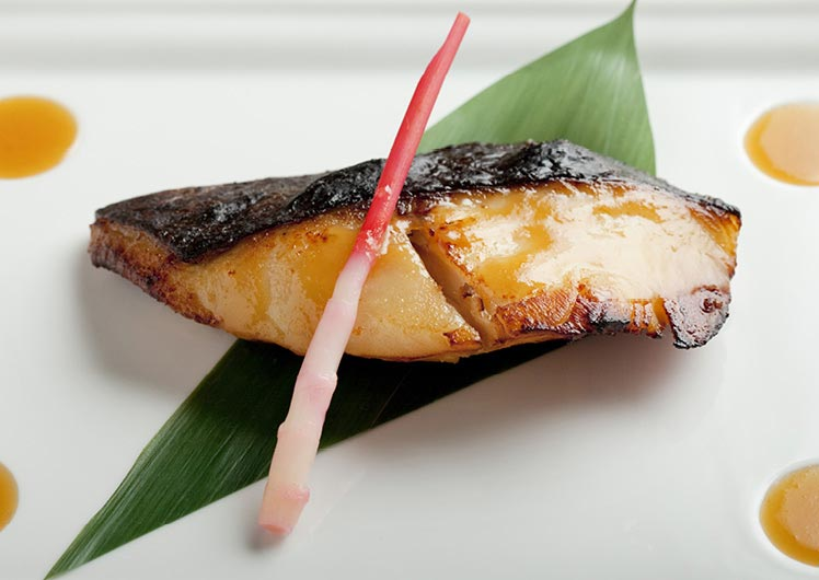 Black Cod Miso Nobu Restaurant Crown Perth
