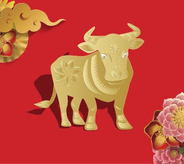 Lunar New Year Zodiacs year of the ox